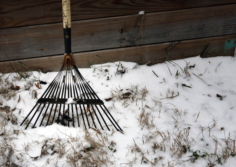 keep your lawn healthy during winter