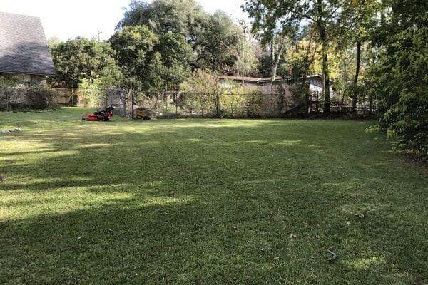 Lawn Maintenance - Copy